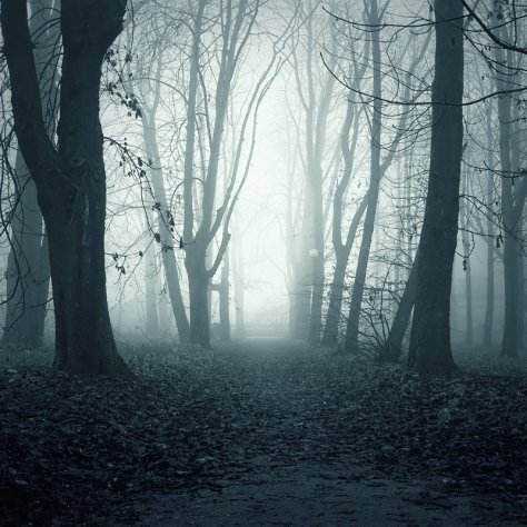 ghostly_path_premade_1_by_i_am_jenius-d4ddh0p